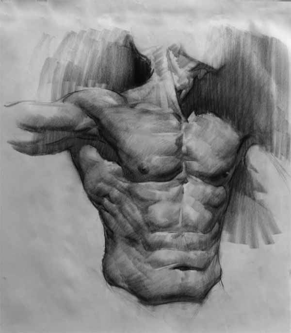 Anatomy Study From Life By E.M. Gist