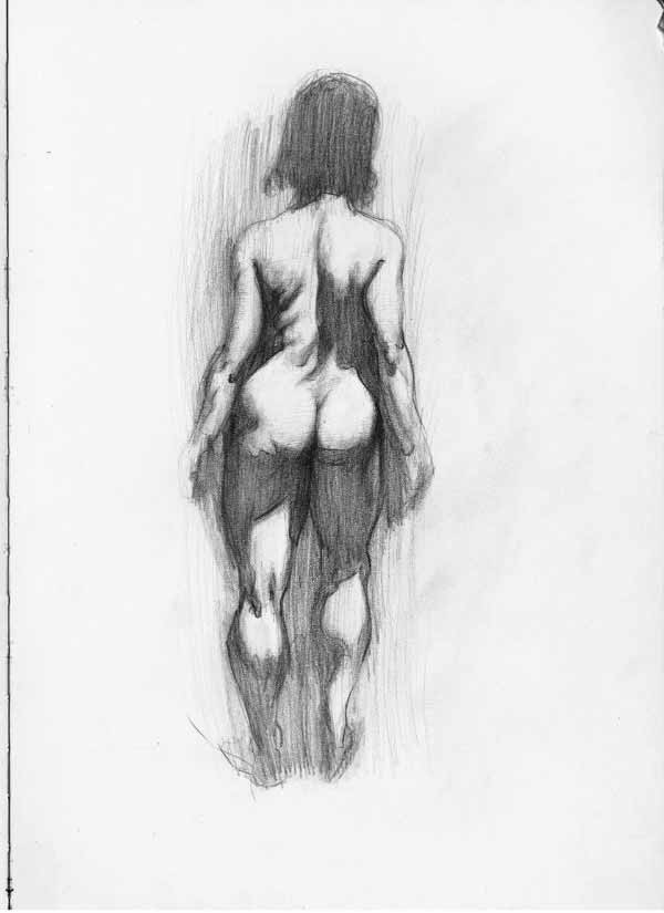 Female Figure Drawing By Greg Wright