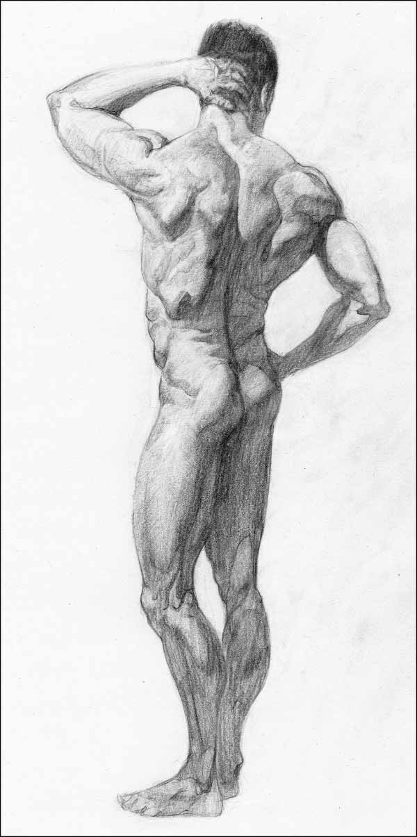 Standing Figure Drawing By Greg Wright