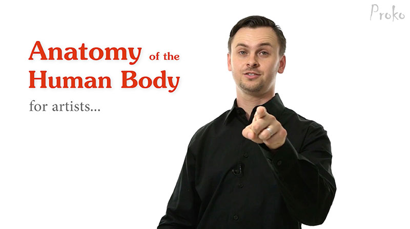 Anatomy Of Human Body Introduction